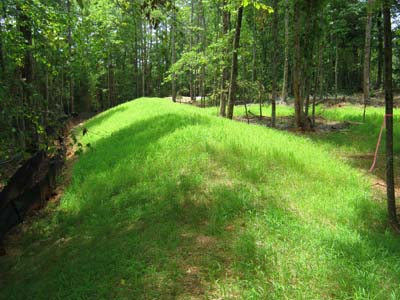 erosion pros stream protection